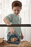 Little boy caring for his hamster Stock Photo - Premium Royalty-Freenull, Code: 6106-05492182