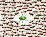 Metallic bug and ants Stock Photo - Premium Royalty-Free, Artist: Aflo Relax, Code: 6106-05493668