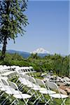 Scenic Mt. Adams from wedding site in Hood River Stock Photo - Premium Royalty-Free, Artist: Karen Whylie, Code: 6106-05496483