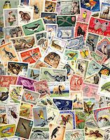 stamped - Assortment of postage stamps with animals Stock Photo - Premium Royalty-Freenull, Code: 6106-05508754