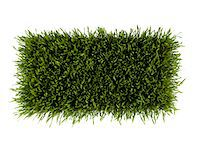 rectangle - Patch of green grass on white background Stock Photo - Premium Royalty-Freenull, Code: 6106-05512709