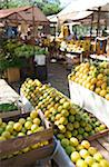 Outdoor market stand with fruits Stock Photo - Premium Royalty-Freenull, Code: 6106-05512810