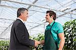 Businessman and gardener shaking hands Stock Photo - Premium Royalty-Free, Artist: Blend Images, Code: 635-05550677