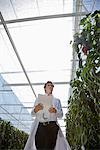 Scientist examining plants in greenhouse Stock Photo - Premium Royalty-Freenull, Code: 635-05550684