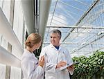 Scientists talking in greenhouse Stock Photo - Premium Royalty-Freenull, Code: 635-05550704
