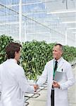 Scientists shaking hands in greenhouse
