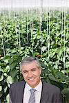 Businessman standing in greenhouse Stock Photo - Premium Royalty-Freenull, Code: 635-05550726