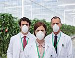 Scientists wearing masks in greenhouse Stock Photo - Premium Royalty-Free, Artist: Blend Images, Code: 635-05550729
