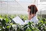 Scientist talking on cell phone in greenhouse Stock Photo - Premium Royalty-Freenull, Code: 635-05550732