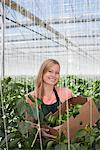 Woman picking produce in greenhouse Stock Photo - Premium Royalty-Freenull, Code: 635-05550733