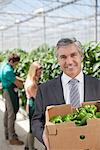 Businessman carrying box of produce in greenhouse Stock Photo - Premium Royalty-Freenull, Code: 635-05550736