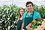 Workers with produce in greenhouse Stock Photo - Premium Royalty-Freenull, Code: 635-05550751