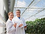 Scientists talking in greenhouse Stock Photo - Premium Royalty-Freenull, Code: 635-05550777