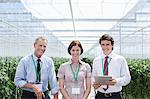 Workers standing together in greenhouse Stock Photo - Premium Royalty-Freenull, Code: 635-05550793