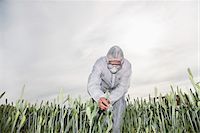 Scientist in protective gear examining plants Stock Photo - Premium Royalty-Freenull, Code: 635-05550807