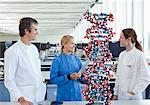 Scientists talking in lab Stock Photo - Premium Royalty-Free, Artist: Cultura RM, Code: 635-05550851