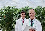 Scientist using clipboard in greenhouse Stock Photo - Premium Royalty-Free, Artist: Blend Images, Code: 635-05550955