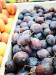 Plums at Market Stock Photo - Premium Royalty-Free, Artist: Michael Alberstat, Code: 600-05560310