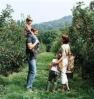 family apple orchard - Family Standing in an Orchard Stock Photo - Premium Royalty-Freenull, Code: 6106-05590474