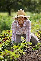 Portrait of Farmer Working on Organic Farm Stock Photo - Premium Rights-Managednull, Code: 700-05602720