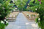 Terrace set up for wedding Stock Photo - Premium Royalty-Free, Artist: Karen Whylie, Code: 6106-05603433