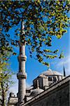 Detail of Blue Mosque, Istanbul, Turkey Stock Photo - Premium Rights-Managed, Artist: R. Ian Lloyd, Code: 700-05609455