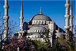 Close-Up of Blue Mosque, Istanbul, Turkey Stock Photo - Premium Rights-Managed, Artist: R. Ian Lloyd, Code: 700-05609457