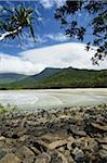 Myall Beach, Daintree National Park, Queensland, Australia Stock Photo - Premium Rights-Managed, Artist: Jochen Schlenker, Code: 700-05609682