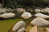 queensland - Mossman Gorge, Daintree National Park, Queensland, Australia Stock Photo - Premium Rights-Managednull, Code: 700-05609694