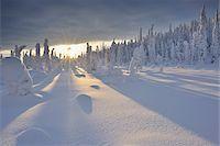 Valtavaara, Kuusamo, Northern Ostrobothnia, Oulu Province, Finland Stock Photo - Premium Royalty-Freenull, Code: 600-05609967