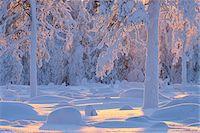 Kuusamo, Northern Ostrobothnia, Oulu Province, Finland Stock Photo - Premium Royalty-Freenull, Code: 600-05609982