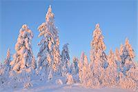 Kuusamo, Northern Ostrobothnia, Oulu Province, Finland Stock Photo - Premium Royalty-Freenull, Code: 600-05609983