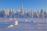 Kuusamo, Northern Ostrobothnia, Oulu Province, Finland Stock Photo - Premium Royalty-Freenull, Code: 600-05609988