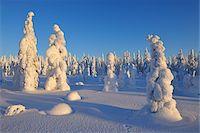 Kuusamo, Northern Ostrobothnia, Oulu Province, Finland Stock Photo - Premium Royalty-Freenull, Code: 600-05609989