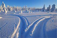 Kuusamo, Northern Ostrobothnia, Oulu Province, Finland Stock Photo - Premium Royalty-Freenull, Code: 600-05609991