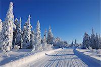 Road, Kuusamo, Northern Ostrobothnia, Oulu Province, Finland Stock Photo - Premium Royalty-Freenull, Code: 600-05609996