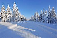 Road, Kuusamo, Northern Ostrobothnia, Oulu Province, Finland Stock Photo - Premium Royalty-Freenull, Code: 600-05609998