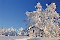Log Cabin in Winter, Kuusamo, Northern Ostrobothnia, Finland Stock Photo - Premium Rights-Managednull, Code: 700-05609961