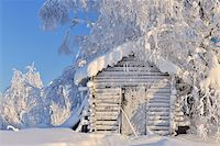Log Cabin in Winter, Kuusamo, Northern Ostrobothnia, Finland Stock Photo - Premium Rights-Managednull, Code: 700-05609962