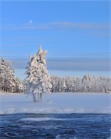Kitkajoki River and Snow Covered Trees, Kuusamo, Northern Ostrobothnia, Finland Stock Photo - Premium Royalty-Freenull, Code: 600-05610028