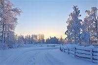 Snow Covered Road, Kuusamo, Northern Ostrobothnia, Finland Stock Photo - Premium Royalty-Freenull, Code: 600-05610043