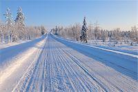 Snow Covered Road, Kuusamo, Northern Ostrobothnia, Finland Stock Photo - Premium Royalty-Freenull, Code: 600-05610047