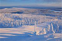 Snow Covered Landscape, Rukatunturi, Kuusamo, Northern Ostrobothnia, Finland Stock Photo - Premium Royalty-Freenull, Code: 600-05610056