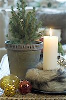 potted plant - Burning candle and potted plant Stock Photo - Premium Royalty-Freenull, Code: 689-05610792