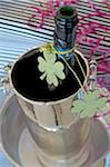 Bottle of champagne decorated with four leaf clover in champagne bucket Stock Photo - Premium Royalty-Free, Artist: Garry Black, Code: 689-05610852