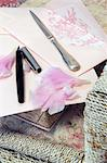 Letter, rose petals, stylograph and letter opener on chair Stock Photo - Premium Royalty-Free, Artist: Blend Images, Code: 689-05611863