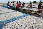 Workers Drying Small Fish, Paknam Tako, Chumphon Province, Thailand Stock Photo - Premium Rights-Managed, Artist: dk & dennie cody, Code: 700-05641571