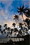 Beach at Sunset, Amanwella Hotel, Tangalle, Sri Lanka Stock Photo - Premium Rights-Managed, Artist: R. Ian Lloyd, Code: 700-05642164