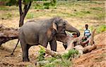 Man with Elephant, Yala National Park, Sri Lanka