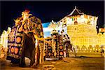 Elephants and Temple of the Tooth, Esala Perahera Festival, Kandy, Sri Lanka Stock Photo - Premium Rights-Managed, Artist: R. Ian Lloyd, Code: 700-05642336